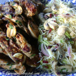 "Teriyaki Chicken & Noodles ~ ""Take-Out"" Only I Didn't !!!!"