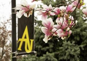Adelphi Green Initiative – #AdelphiFreshAir