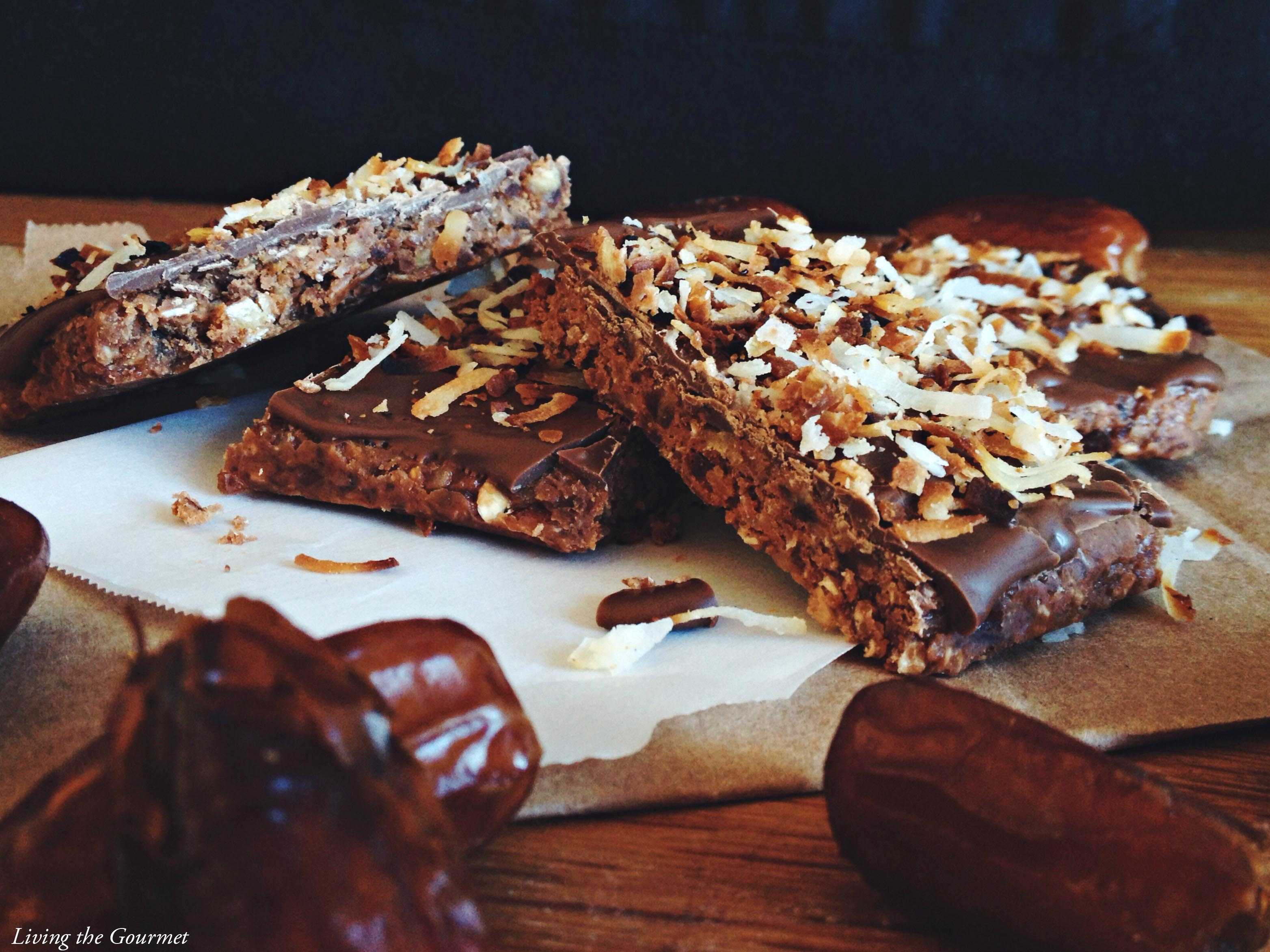 Living the Gourmet: Cocoa Protein Bars