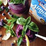 Fresh Blueberry Slushy