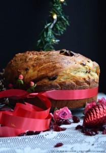 Holiday Panettone with Craisins