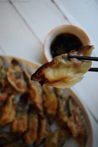 Pork Pot Stickers & A Chinese New Year Celebration