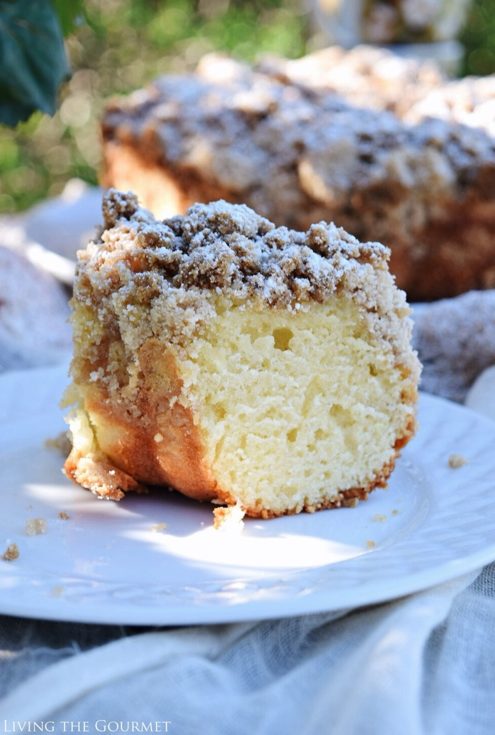 Living the Gourmet: New York Style Crumb Cake | #BundtBakers