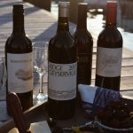 Summer Wine Pairings featuring Zinfandel