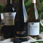 Exploring Texas Wines PRT VI: Hill Country Fall Creek Vineyards