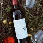 Autumn Wine Selection featuring Jason Stephens Winery